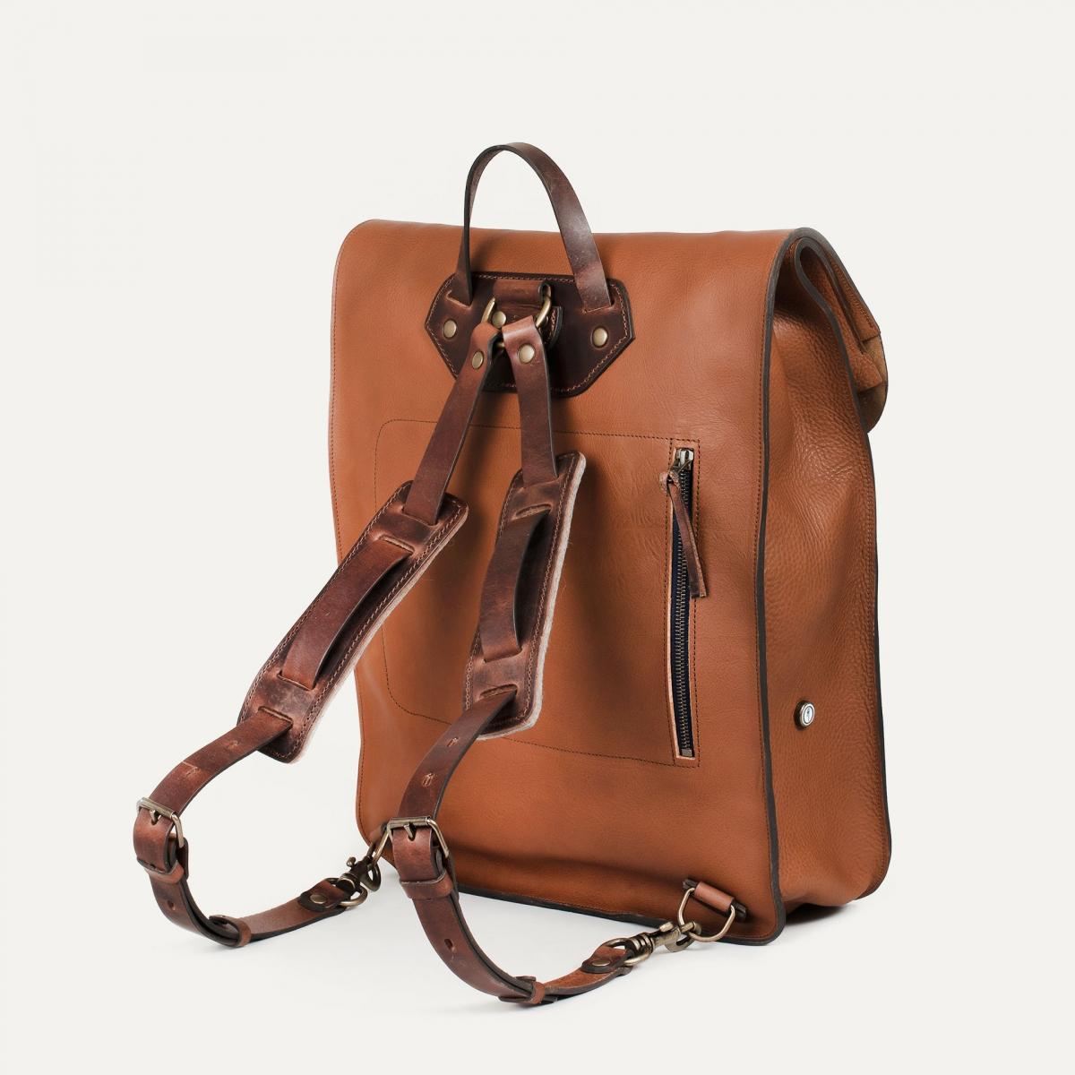 Arlo leather backpack - Cuba Libre / E Pure (image n°3)