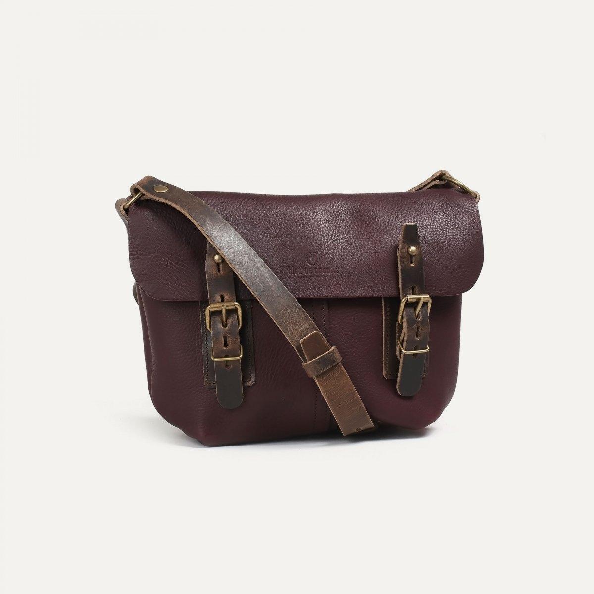 Louis Satchel bag - Peat (image n°2)