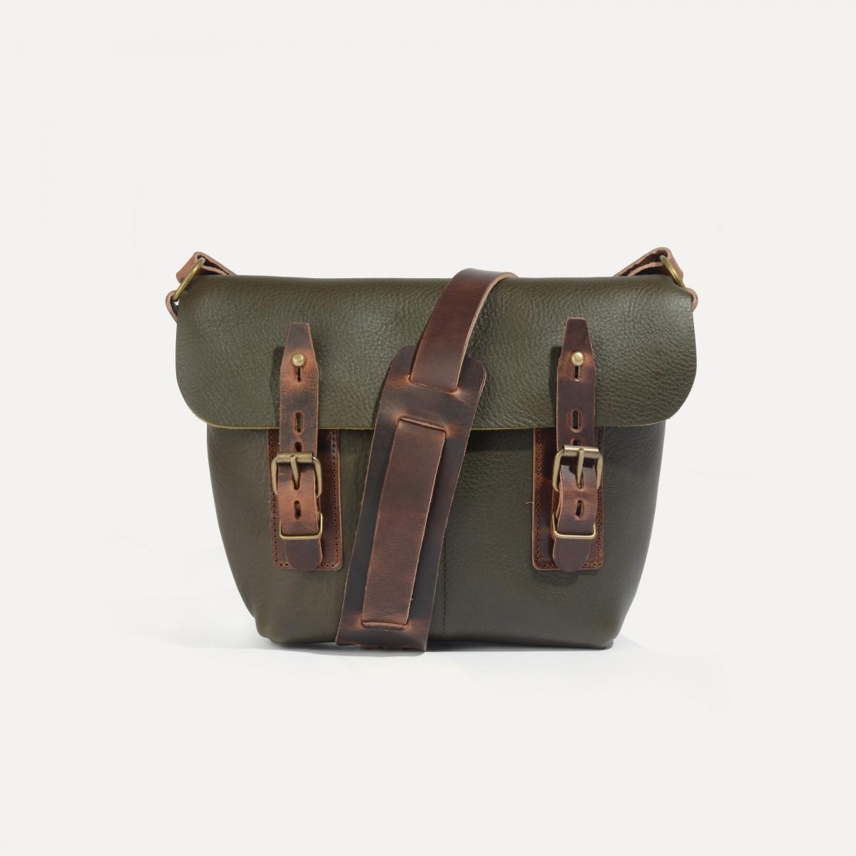 Louis Satchel bag - Khaki (image n°1)