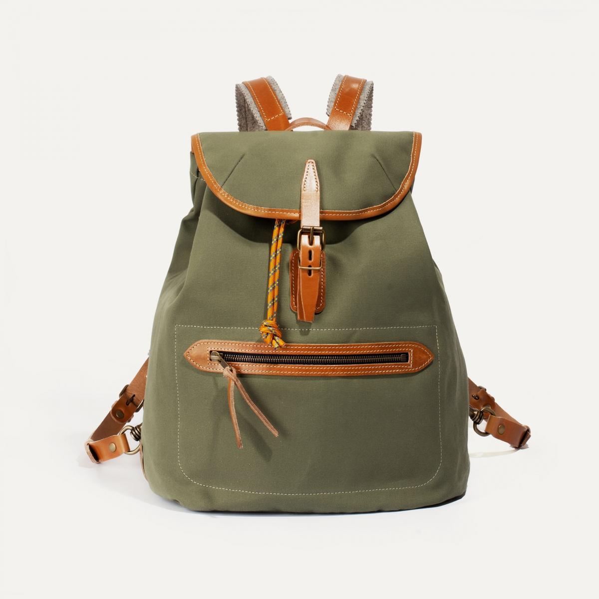 Camp backpack - Lichen Green (image n°1)