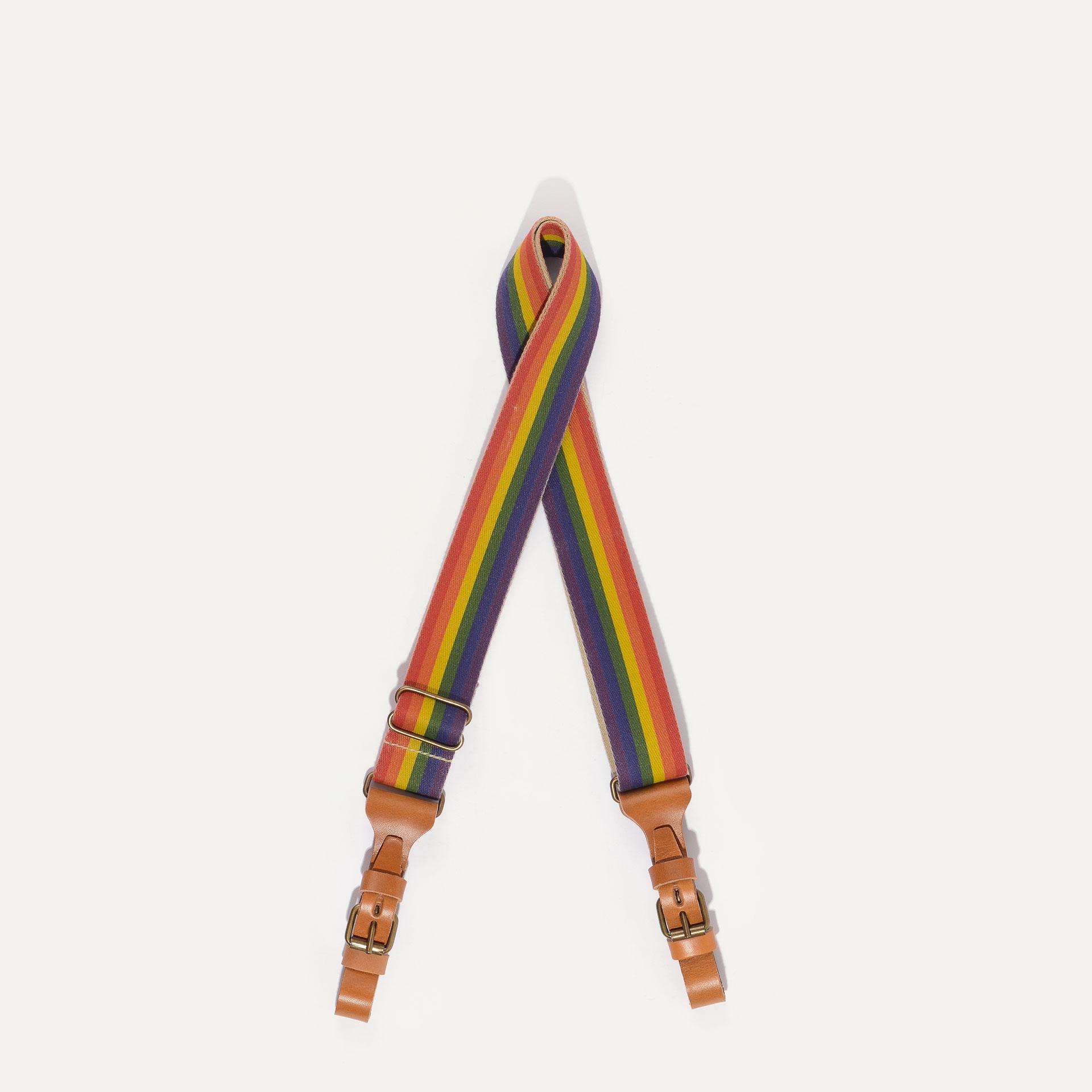 Bandoulière STRIPE Musette - Rainbow (image n°1)
